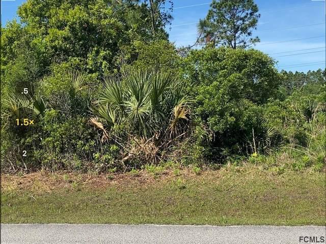 293 Underwood Trl, Palm Coast, FL 32164 (MLS #267026) :: Endless Summer Realty