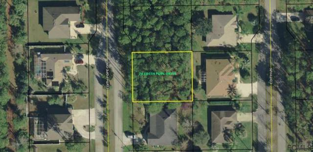 70 Edith Pope Drive, Palm Coast, FL 32164 (MLS #243863) :: Memory Hopkins Real Estate