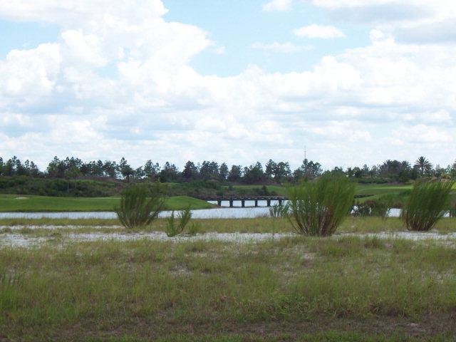 229 Conservatory Drive, Palm Coast, FL 32137 (MLS #197483) :: Memory Hopkins Real Estate