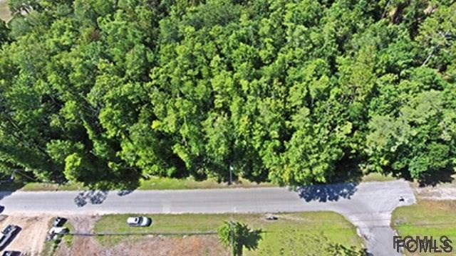 xxx Hibiscus Ave, Bunnell, FL 32110 (MLS #229532) :: RE/MAX Select Professionals
