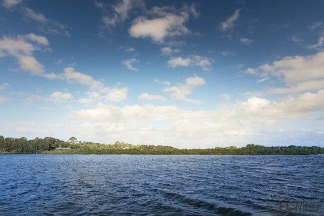 239 S Seaside Landings Dr, Flagler Beach, FL 32136 (MLS #232971) :: RE/MAX Select Professionals