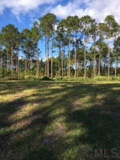 628 Mahogany Run, Palm Coast, FL 32137 (MLS #234129) :: RE/MAX Select Professionals