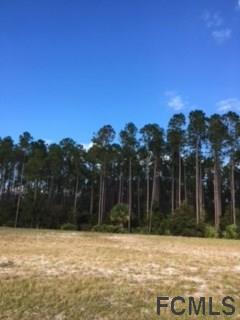 495 Sweetgum Lane, Palm Coast, FL 32137 (MLS #234137) :: RE/MAX Select Professionals