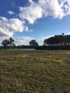 129 Aspen Way, Palm Coast, FL 32137 (MLS #234138) :: Memory Hopkins Real Estate