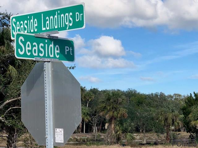 107 Seaside Point, Flagler Beach, FL 32136 (MLS #235271) :: Memory Hopkins Real Estate