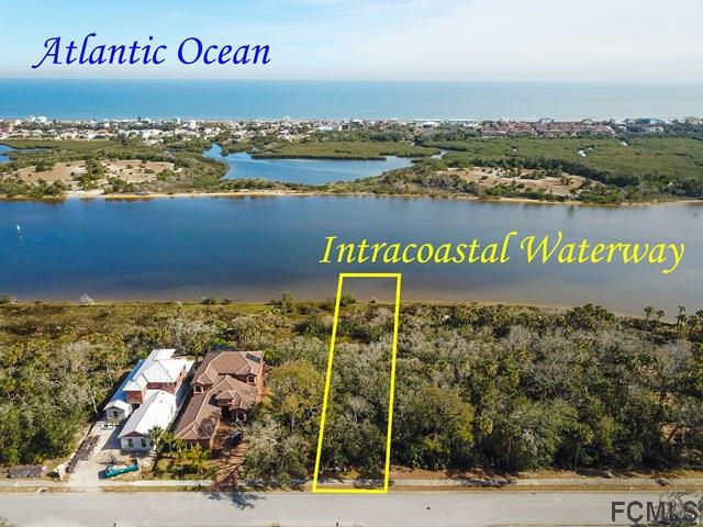 293 Riverwalk Dr S, Palm Coast, FL 32137 (MLS #235427) :: Pepine Realty