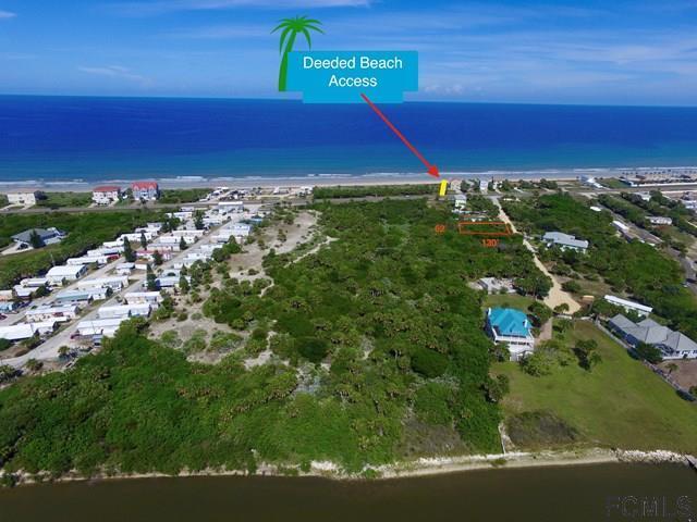 9 Westmayer Place, Flagler Beach, FL 32136 (MLS #235428) :: Pepine Realty