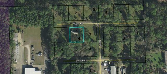 3644 Family Ave, Palm Coast, FL 32164 (MLS #235499) :: RE/MAX Select Professionals