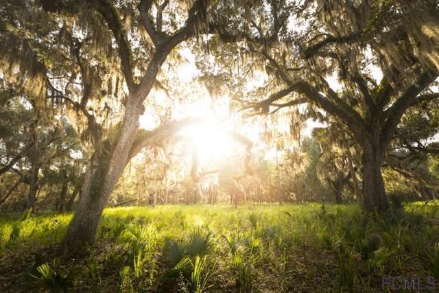 2826 John Anderson Hwy, Flagler Beach, FL 32136 (MLS #236534) :: Memory Hopkins Real Estate