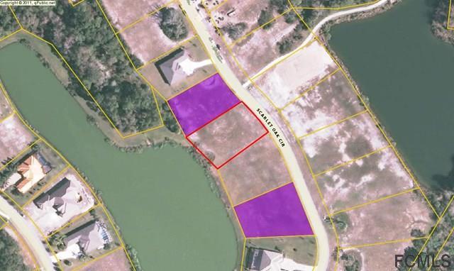 45 Scarlet Oak Circle, Palm Coast, FL 32137 (MLS #238088) :: RE/MAX Select Professionals