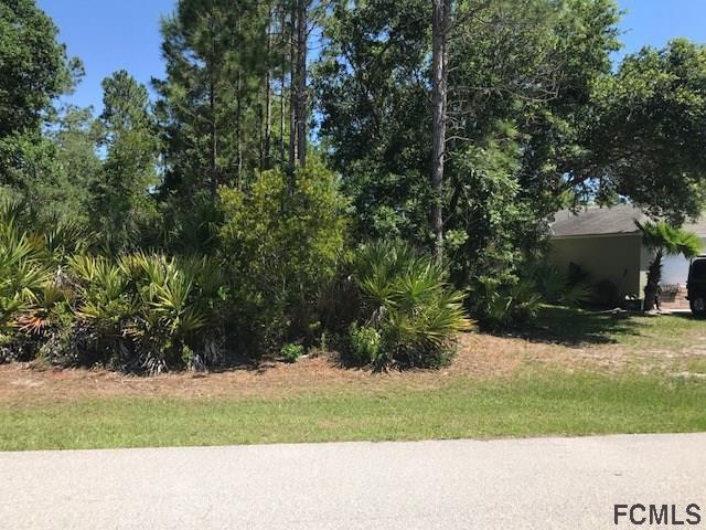 42 White Star Drive, Palm Coast, FL 32164 (MLS #238119) :: RE/MAX Select Professionals