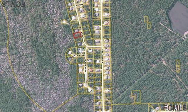 58 Karat Path, Palm Coast, FL 32164 (MLS #238376) :: Pepine Realty