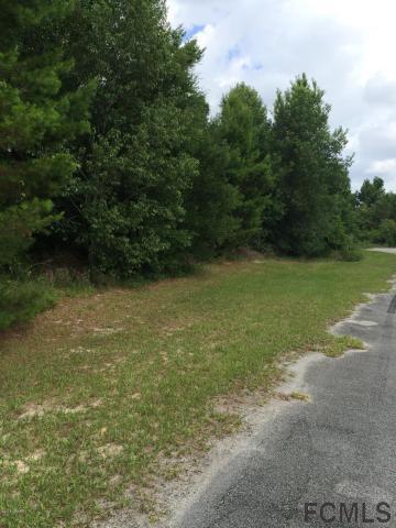 Bunnell, FL 32110 :: Pepine Realty