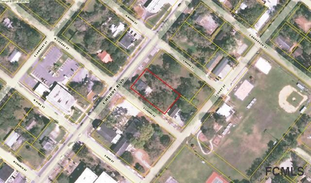 401 E Moody Blvd, Bunnell, FL 32110 (MLS #239038) :: RE/MAX Select Professionals