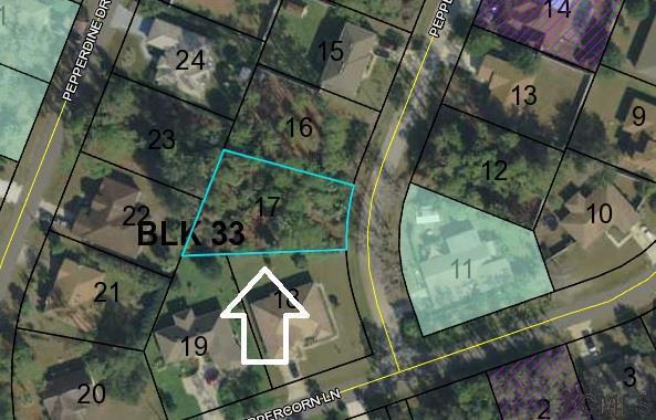 5 Pepper Lane, Palm Coast, FL 32164 (MLS #239125) :: RE/MAX Select Professionals