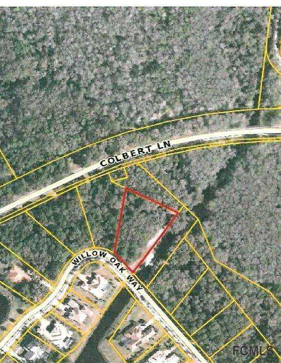 169 Willow Oak Way, Palm Coast, FL 32137 (MLS #239254) :: RE/MAX Select Professionals