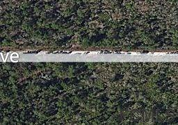 104 NW Fourth Ave, Palatka, FL 32177 (MLS #240076) :: Memory Hopkins Real Estate