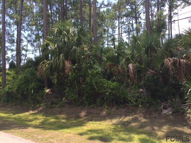 18 Post Oak Ln, Palm Coast, FL 32164 (MLS #240083) :: RE/MAX Select Professionals