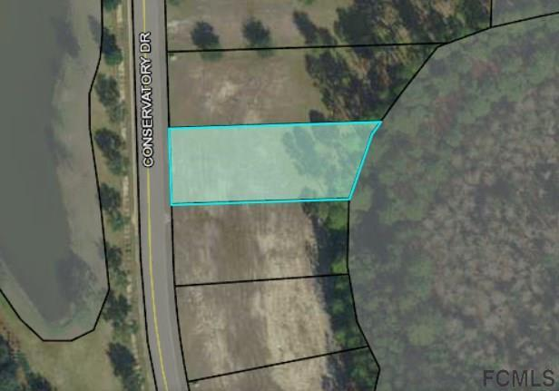 239 Conservatory Drive, Palm Coast, FL 32137 (MLS #240096) :: RE/MAX Select Professionals