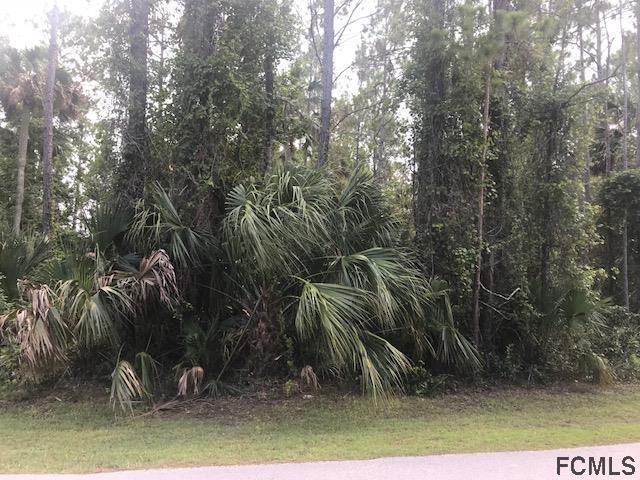 40 Postman Lane, Palm Coast, FL 32164 (MLS #240122) :: Pepine Realty