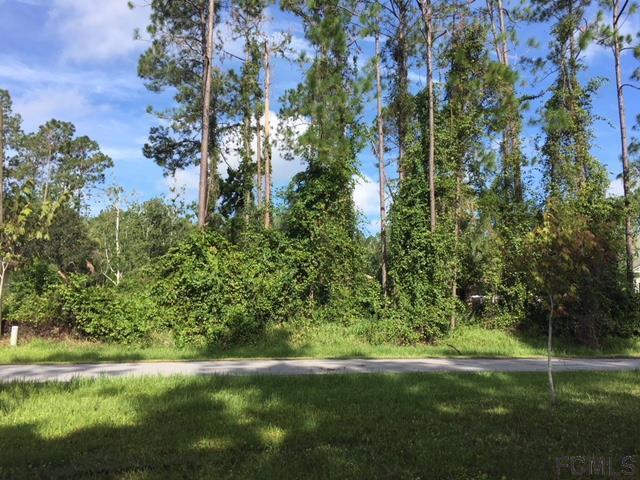 10 Edwin Lane, Palm Coast, FL 32164 (MLS #240590) :: Memory Hopkins Real Estate