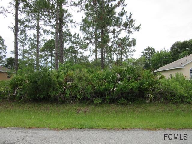 34 White Star Drive, Palm Coast, FL 32164 (MLS #240750) :: Memory Hopkins Real Estate