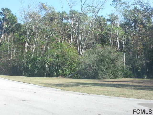 41 Riverview Bend N, Palm Coast, FL 32137 (MLS #240977) :: RE/MAX Select Professionals