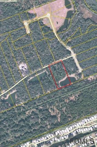 64 Steeplechase Trail, Flagler Beach, FL 32136 (MLS #241805) :: Memory Hopkins Real Estate