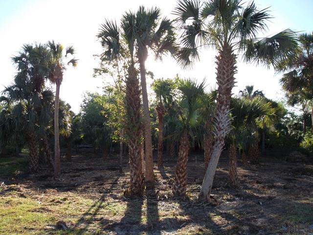 9 Blue Oak Lane, Palm Coast, FL 32137 (MLS #242133) :: RE/MAX Select Professionals