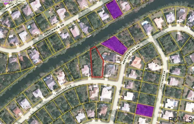 67 President Lane, Palm Coast, FL 32164 (MLS #242166) :: RE/MAX Select Professionals