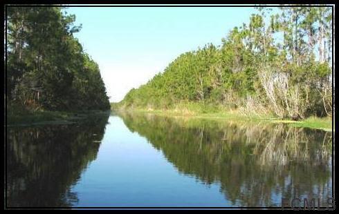 69 Presidential Lane, Palm Coast, FL 32164 (MLS #242306) :: RE/MAX Select Professionals