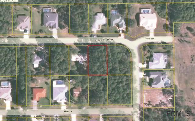 23 Ethan Allen Drive, Palm Coast, FL 32164 (MLS #242328) :: RE/MAX Select Professionals