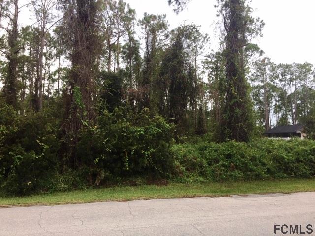 97 Evans Dr, Palm Coast, FL 32164 (MLS #242368) :: RE/MAX Select Professionals