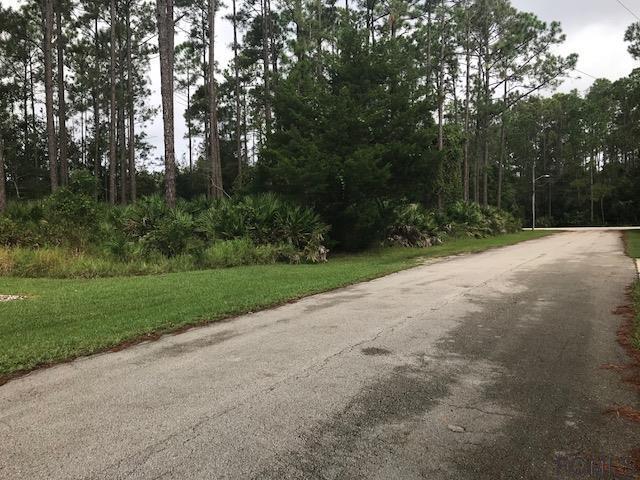4 Ryder Drive, Palm Coast, FL 32164 (MLS #242490) :: RE/MAX Select Professionals