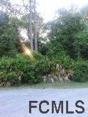 91 Esperanto Drive, Palm Coast, FL 32164 (MLS #242521) :: RE/MAX Select Professionals
