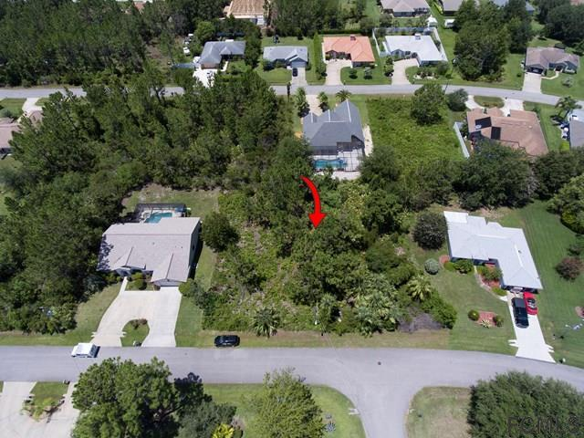 12 Felton Lane, Palm Coast, FL 32137 (MLS #242538) :: RE/MAX Select Professionals