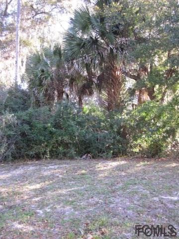 3 Willow Trace, Flagler Beach, FL 32136 (MLS #242552) :: Memory Hopkins Real Estate