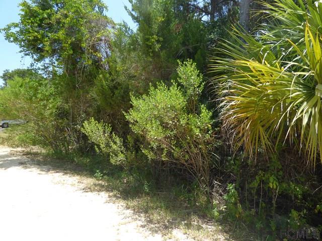 10 Ocean St, Palm Coast, FL 32137 (MLS #242588) :: Memory Hopkins Real Estate