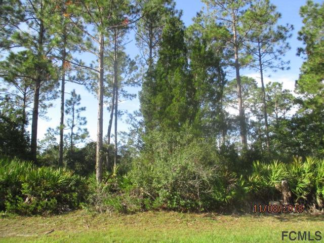 124 Laguna Forest Trl, Palm Coast, FL 32164 (MLS #243257) :: Memory Hopkins Real Estate