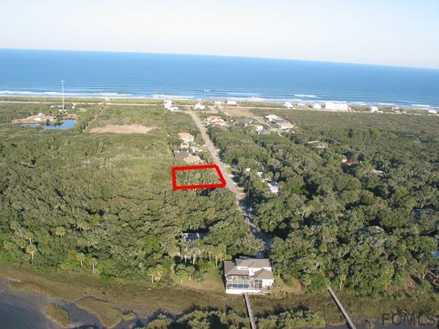 31 Deerwood St, Palm Coast, FL 32137 (MLS #243398) :: RE/MAX Select Professionals