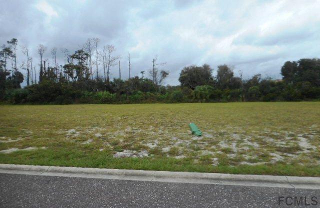 23 Northshore Drive, Palm Coast, FL 32137 (MLS #243419) :: RE/MAX Select Professionals