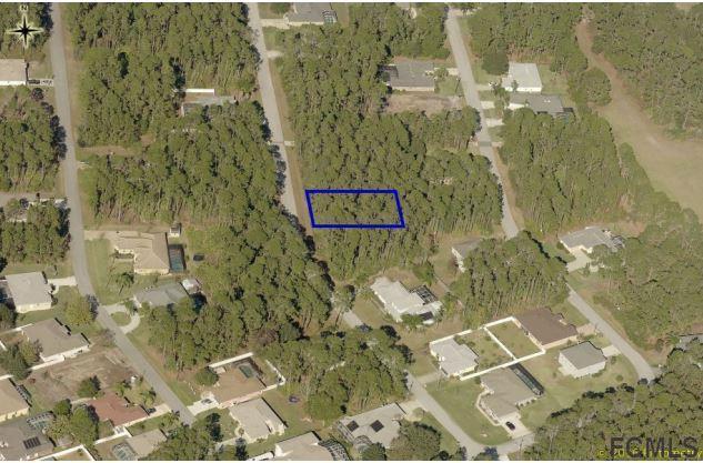 12 Lake Placid Ln, Palm Coast, FL 32137 (MLS #243634) :: Pepine Realty