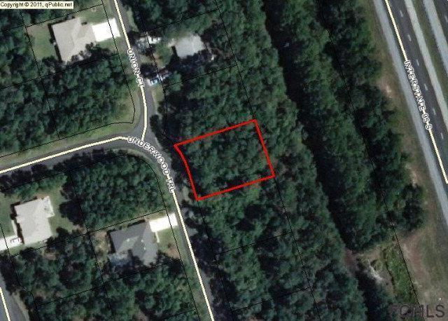 39 Underwood Trl, Palm Coast, FL 32164 (MLS #243871) :: Memory Hopkins Real Estate