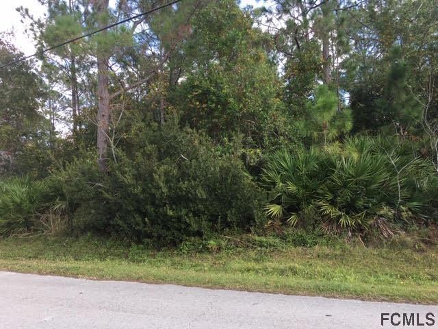 11 Sleepy Hollow Trl, Palm Coast, FL 32164 (MLS #243886) :: Pepine Realty