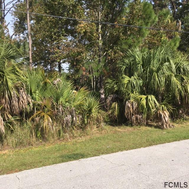 11 Pine Hill Ln, Palm Coast, FL 32164 (MLS #243888) :: Memory Hopkins Real Estate