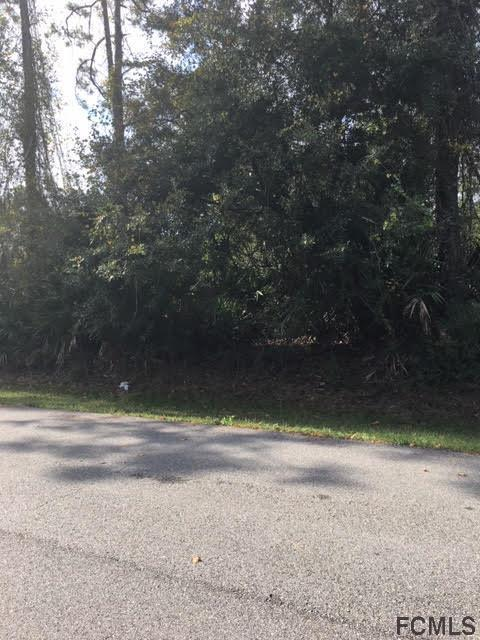 20 Pickcane Ln, Palm Coast, FL 32164 (MLS #243909) :: Memory Hopkins Real Estate