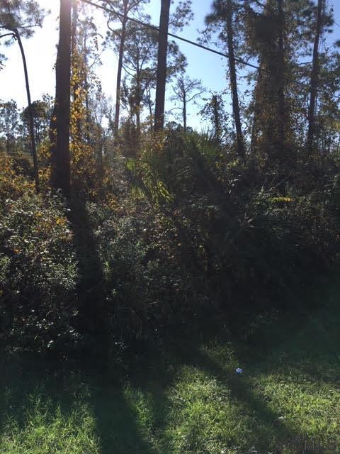 28 Ryder Drive, Palm Coast, FL 32164 (MLS #243913) :: Memory Hopkins Real Estate