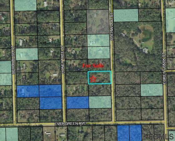 1760 Sherwood Street, Bunnell, FL 32110 (MLS #244038) :: Memory Hopkins Real Estate