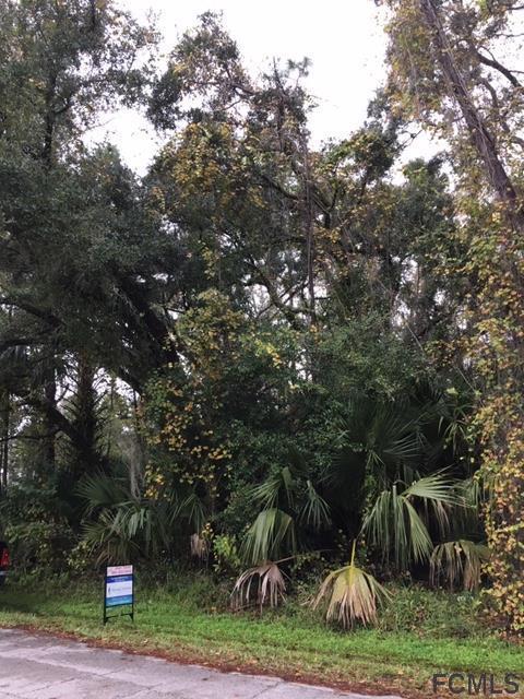 28 Rymen Lane, Palm Coast, FL 32164 (MLS #244054) :: Memory Hopkins Real Estate
