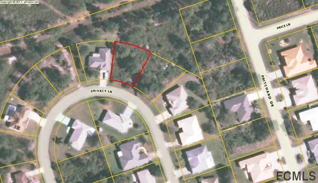 25 Privacy Lane, Palm Coast, FL 32164 (MLS #245624) :: RE/MAX Select Professionals